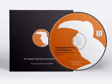 Digital Frog International products/marketing